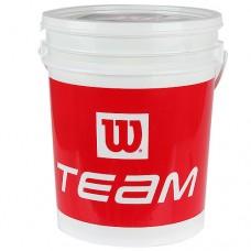 Wilson Team W Trainer